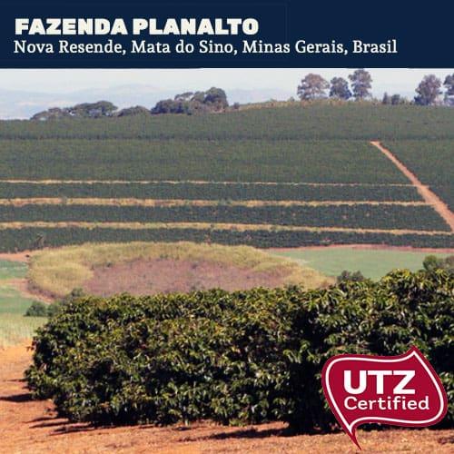 Fazenda Planalto