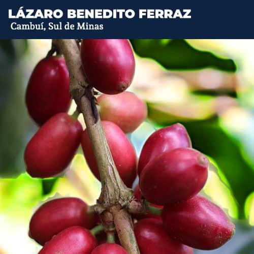 Lazaro Benedito Ferraz